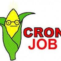 آموزش ایجاد کرون جابز (Cron Jobs) در سی پنل